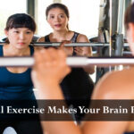 Physical Exercise Makes Your Brain Better